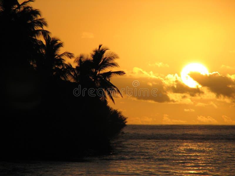 Tropisk Maldives Solnedgång Royaltyfri Foto