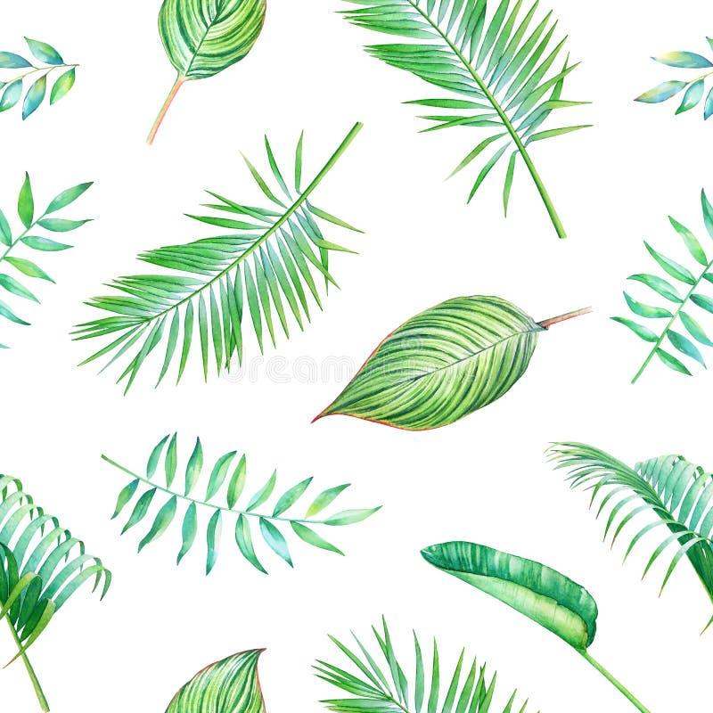 Tropisk modell för sömlös vattenfärg royaltyfri illustrationer