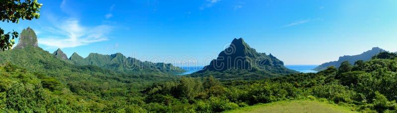 Tropisk Moorea panorama royaltyfria bilder