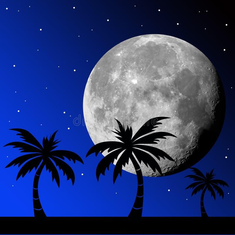 tropisk natt stock illustrationer