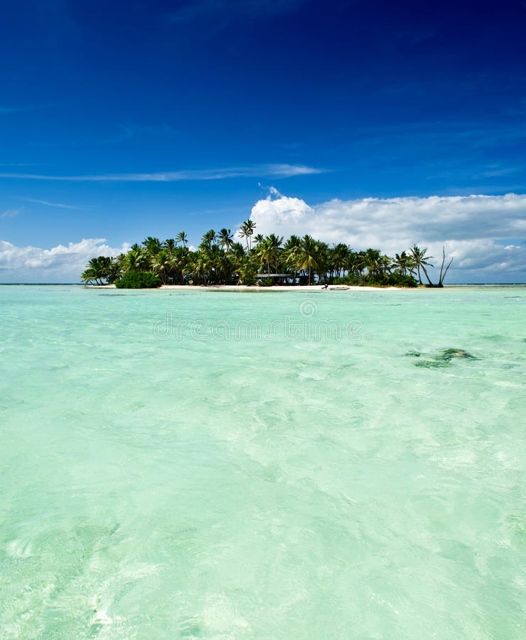 Tropisk obebodd ö i Stilla havet arkivfoto