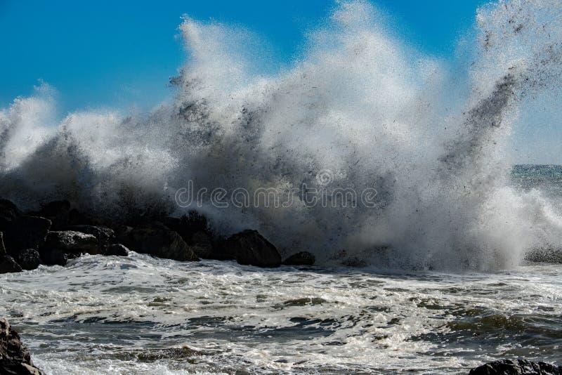 Tropisk orkan för tsunami på havet royaltyfria foton