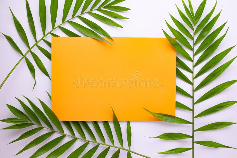 Tropisk palmbladmodell p? orange bakgrund Lekmanna- l?genhet, b?sta sikt royaltyfri illustrationer