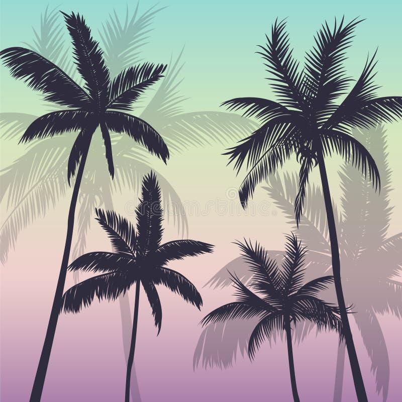 Tropisk palmträdbakgrundskontur stock illustrationer