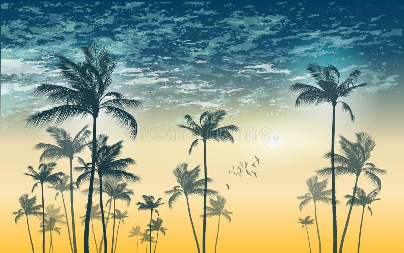 Tropisk palmträdkontur på solnedgången eller månsken, med cl stock illustrationer