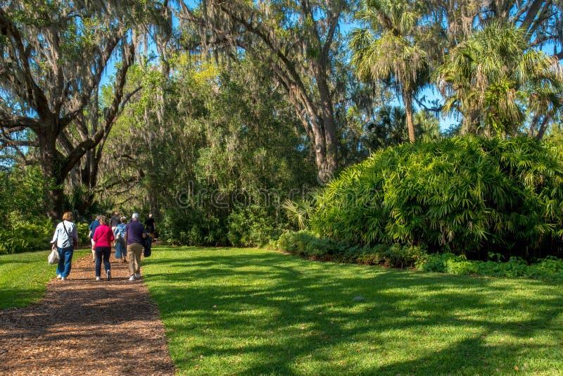 tropisk park promenad arkivbild