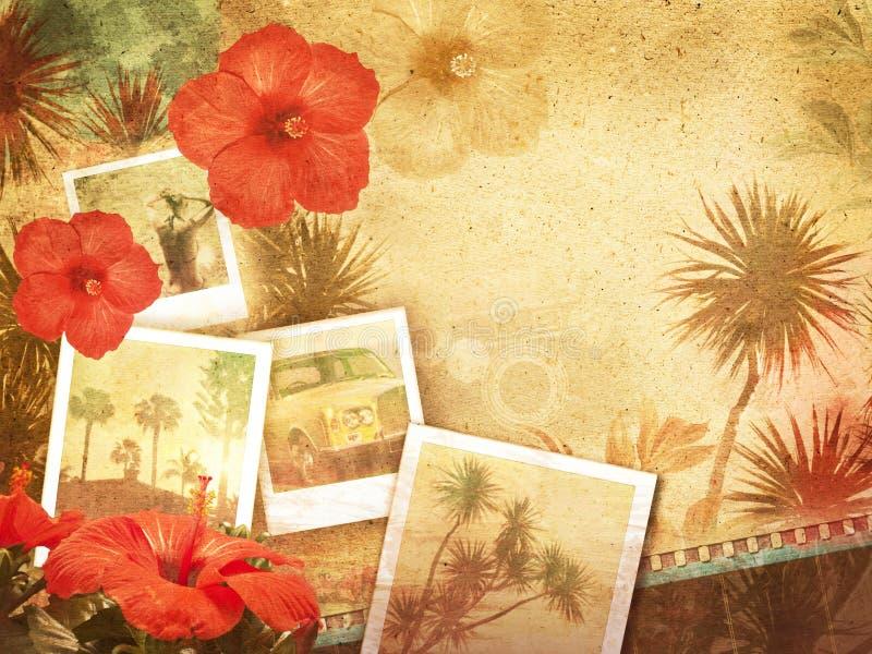 Tropisk Retro bakgrund royaltyfri foto