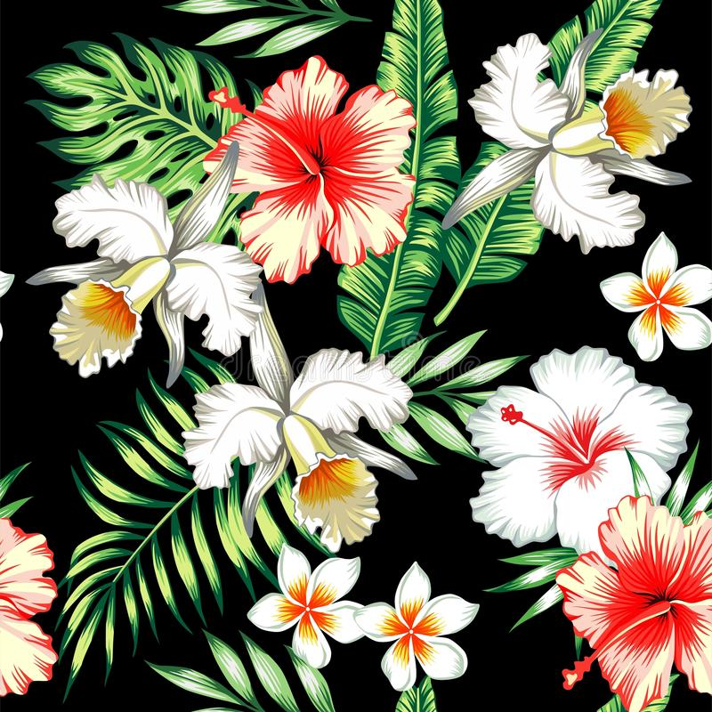 Tropisk sömlös bakgrund för hibiskus och för orkidér stock illustrationer