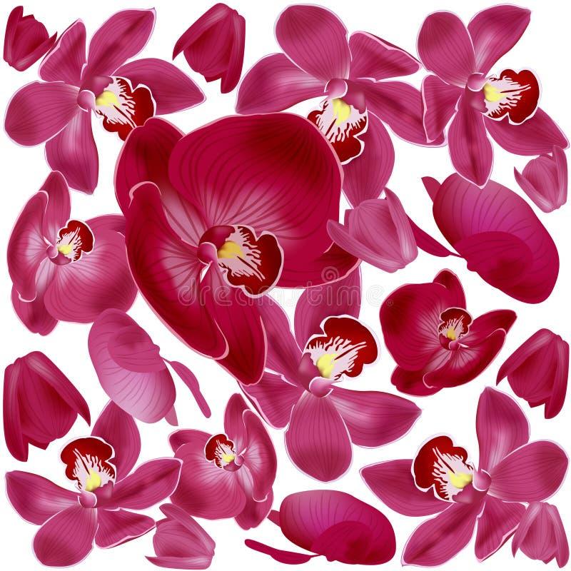 Tropisk sömlös modell med rosa orkidéblommor Blom- tapet för vändkrets som isoleras på vit bakgrund stock illustrationer