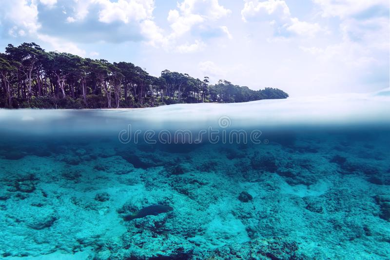 Tropisk sandstrandsplittring ovanför och nedanför vatten, Bali, Indiska oceanen arkivfoto