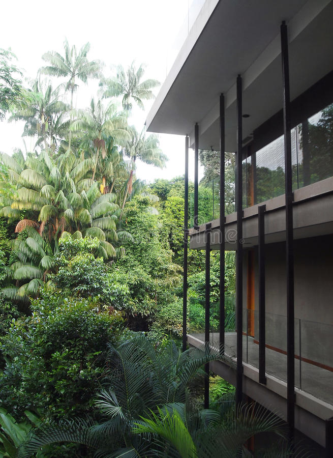 Tropisk semesterort i djungel arkivbild