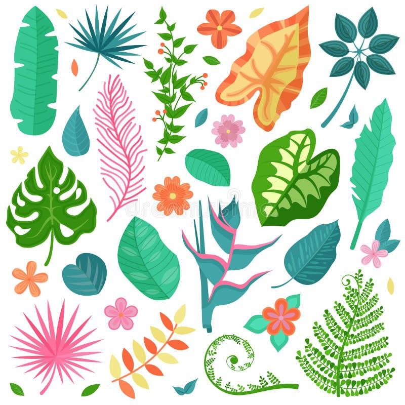 Tropisk sida- och blommasamlingsuppsättning royaltyfri illustrationer