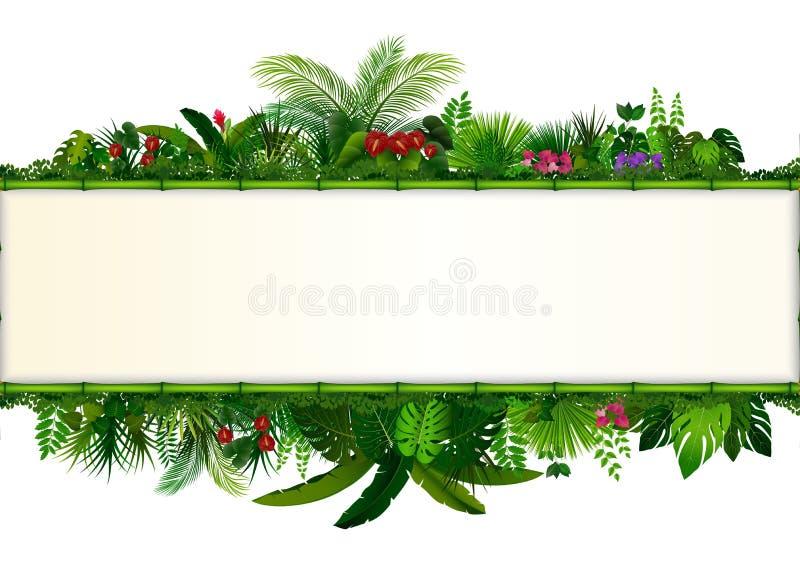Tropisk sidabakgrund Ram för rektangelväxtbambu med utrymme för text Tropisk lövverk med horisontalbanret vektor illustrationer