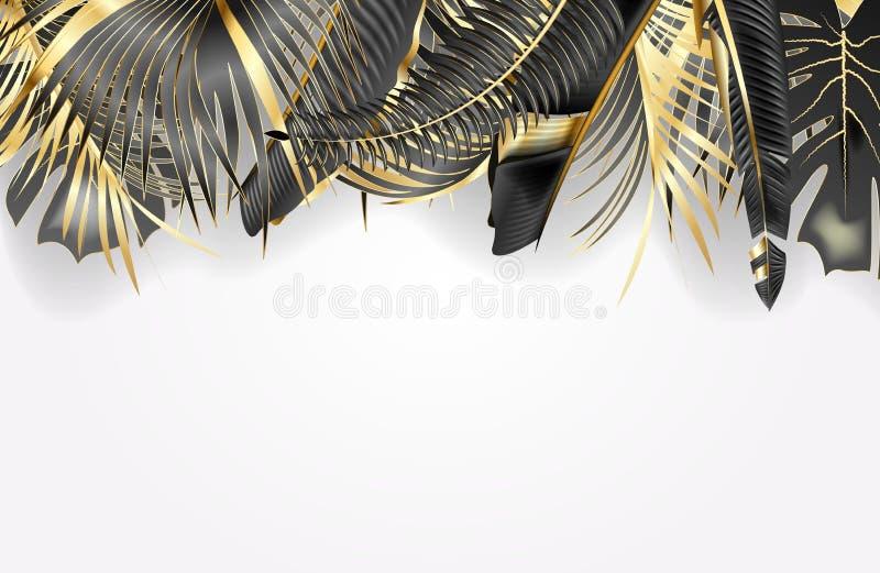 Tropisk sidagräns som isoleras på vit bakgrund vektor illustrationer