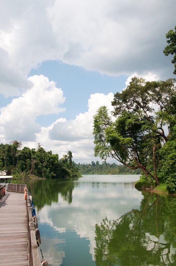 Tropisk sjö i den Singapore zoo fotografering för bildbyråer