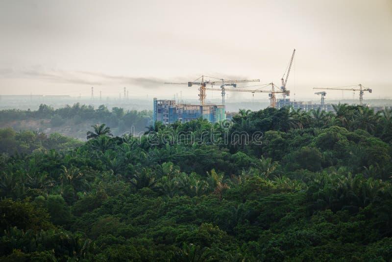 Tropisk skogförstörelse - konstruktion av skyskrapor i skogzon royaltyfria foton