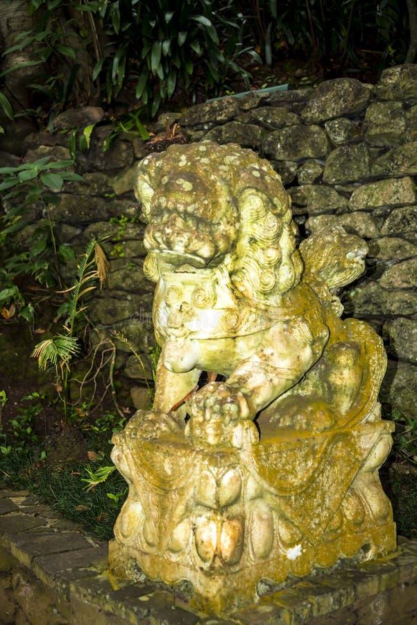 Tropisk slottträdgård på Monte ovanför den Funchal madeiran royaltyfria foton
