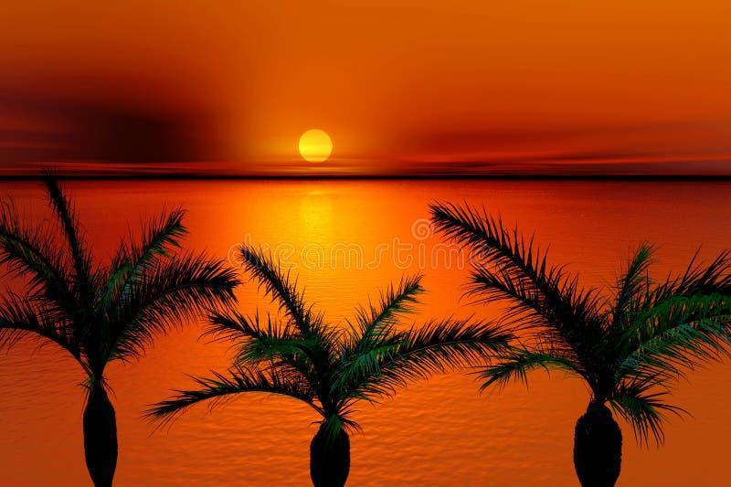 tropisk solnedgång royaltyfri illustrationer