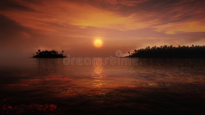 Tropisk solnedgång vektor illustrationer