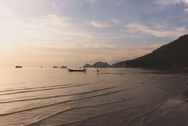 Tropisk solnedgång i stranden med ungespring arkivfoton
