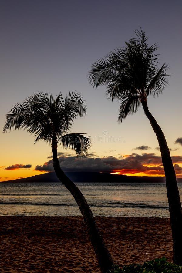 Tropisk solnedgång på en Maui strand royaltyfria bilder