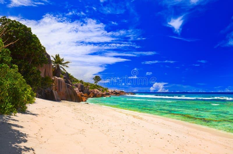 Download Tropisk strand fotografering för bildbyråer. Bild av sommar - 19790301