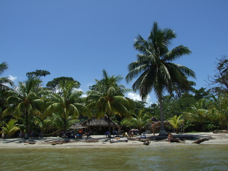 tropisk strand fotografering för bildbyråer