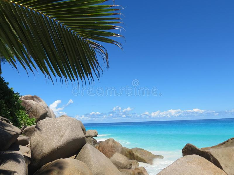 Tropisk strand Anse Georgette royaltyfria foton