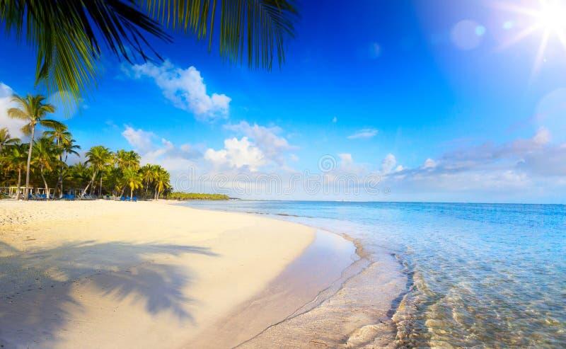 Tropisk strand för sommar; Fridsam semesterbakgrund arkivbild
