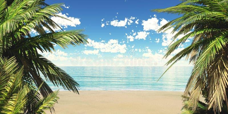 Tropisk strand, havskust med palmträd vektor illustrationer