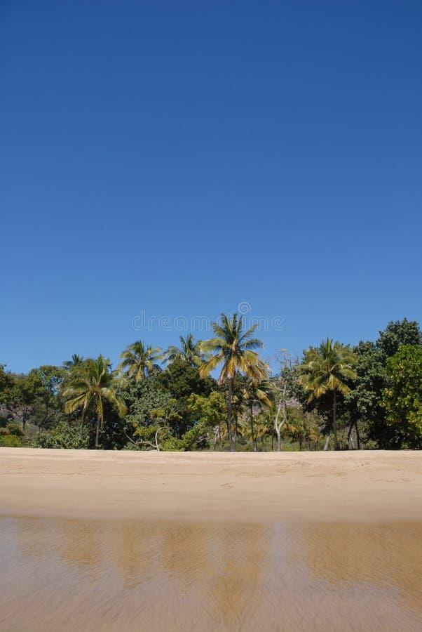 Tropisk strand i avlägsna norr Queensland, Australien arkivbild