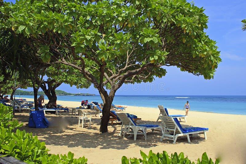 Tropisk strand i Bali, Nusa Dua, Indonesien arkivbilder