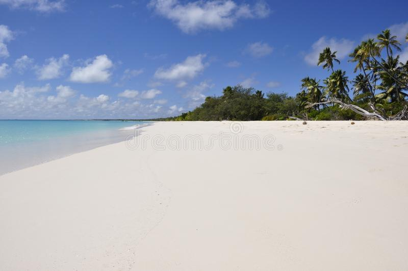 Tropisk strand i den Ouvea ön, Nya Kaledonien royaltyfria foton