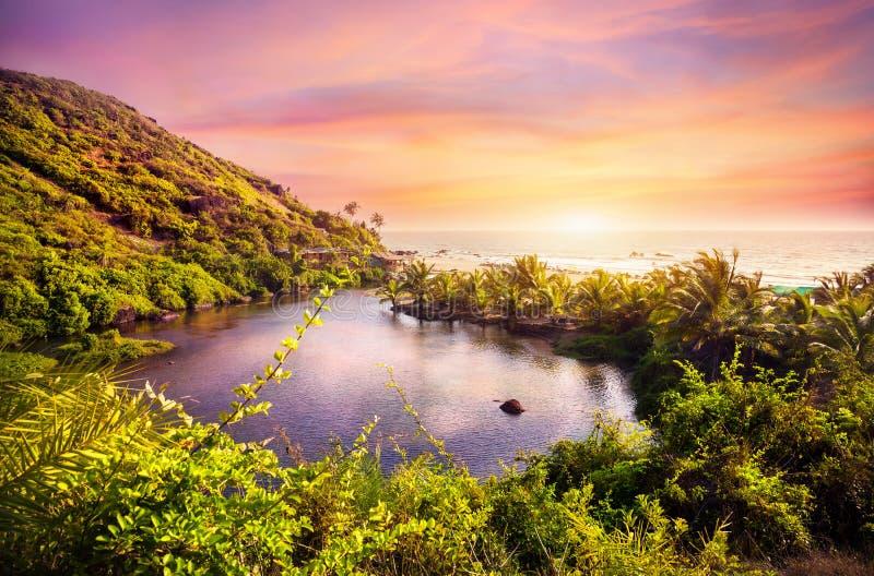 Tropisk strand i Goa royaltyfri bild