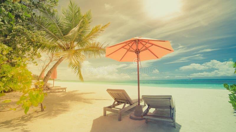 Tropisk strand i tappningstileffekt Solparaplyet och solstolar, sol bäddar ned, och palmträd under solljus slösar havsbackgroud royaltyfria foton
