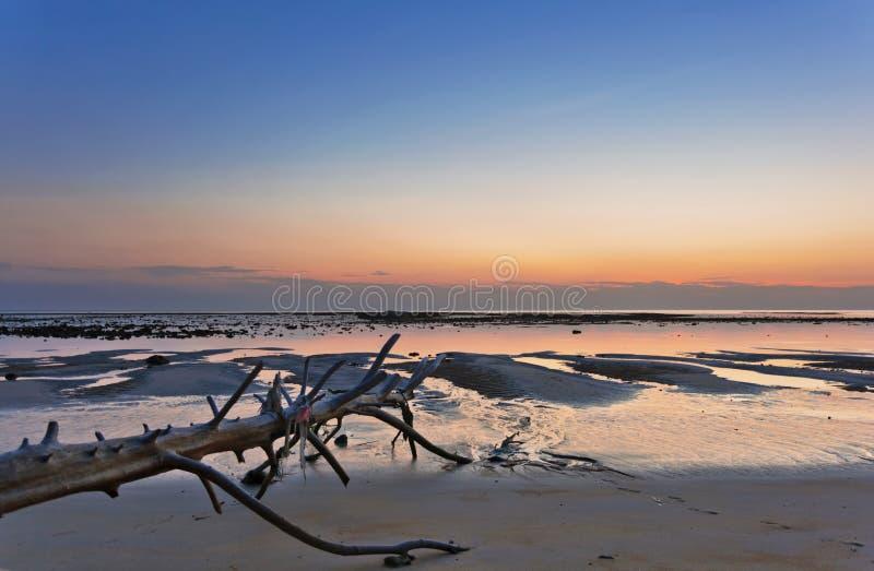 Tropisk strand med det gamla trähindret på solnedgången arkivfoto