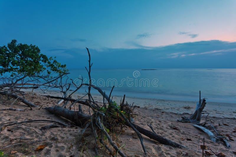 Tropisk strand med det gamla trähindret på solnedgången royaltyfria foton