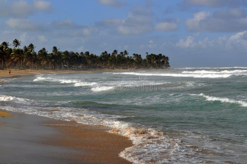 Tropisk strand med grov bränning royaltyfria foton