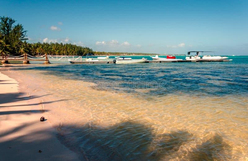 Tropisk strand med klart havvatten, kokosnöt på sittpinnen, ett j arkivbilder