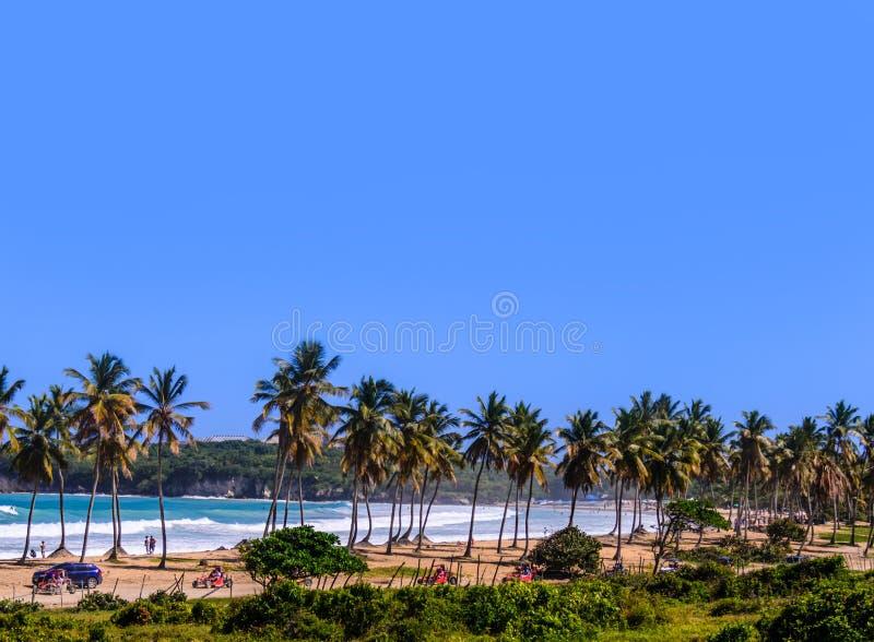 Tropisk strand med palmträd, hav med vitvågor och en kram royaltyfria foton