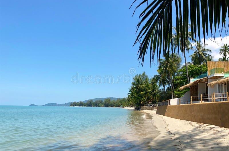 Tropisk strand med palmträd och tropiska hus royaltyfri foto