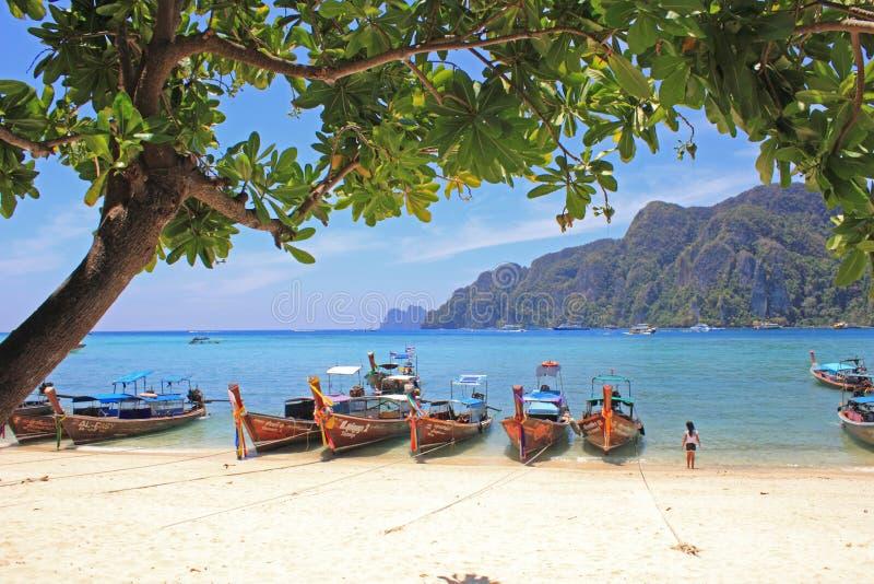 Tropisk strand, Phiphiö, Thailand royaltyfri fotografi