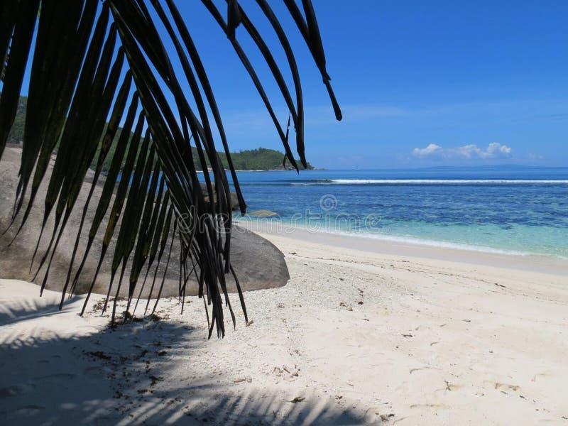 Tropisk strand St Anne ön av hjortarna royaltyfri foto