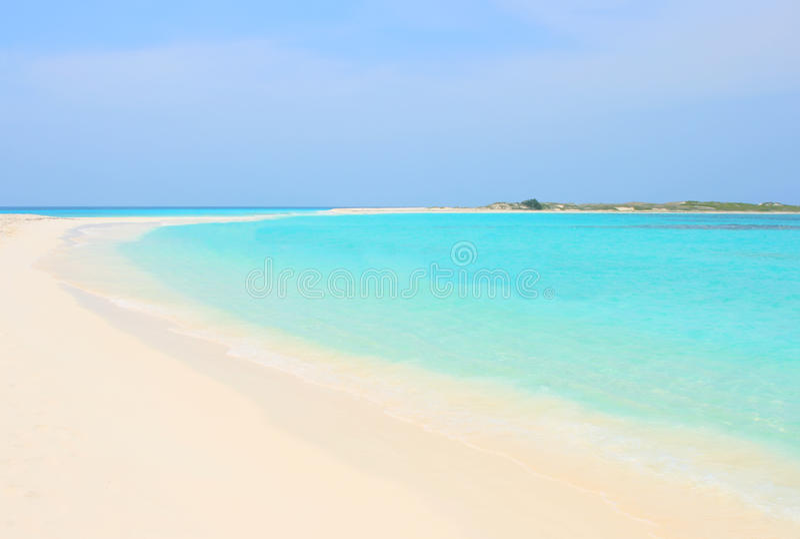 Tropisk strand, Venezuela royaltyfri fotografi