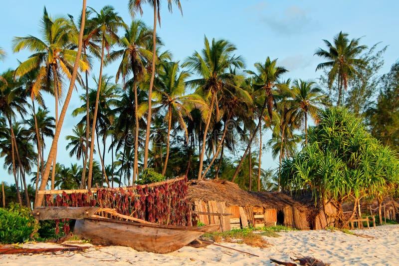 Tropisk strand - Zanzibar royaltyfri bild