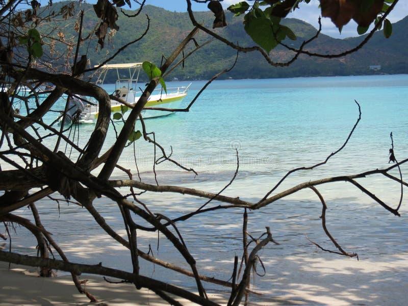 Tropisk strandanse lazio royaltyfri fotografi