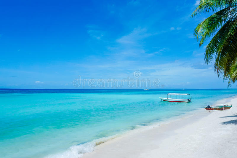 Tropisk strandFilippinerna royaltyfria bilder