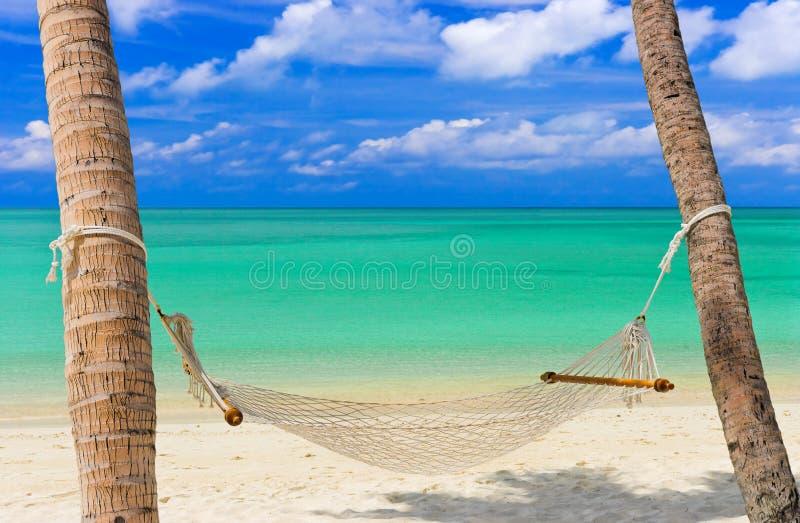 tropisk strandhängmatta royaltyfri foto