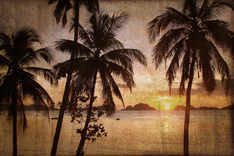 Tropisk strandsolnedgång med palmträd, tappningprocess arkivfoto