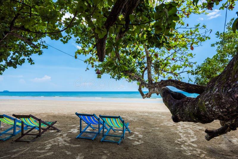 Tropisk träd- och strandstol på den vita sandstranden och det blåa havet arkivbilder